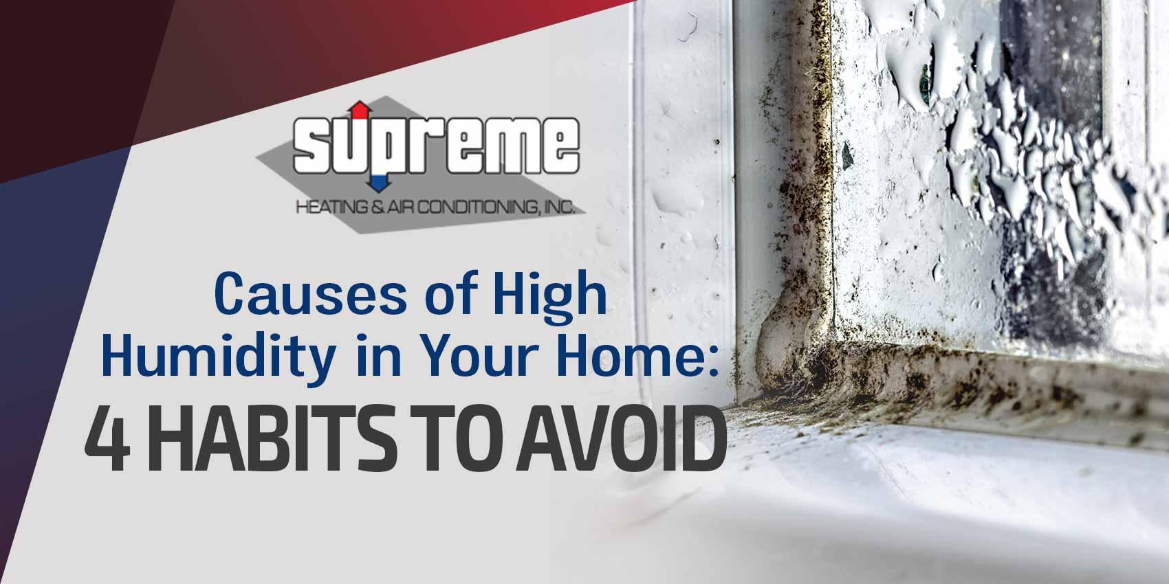 Cause of High Humidity in Your Home: 4 HABITS TO AVOID
